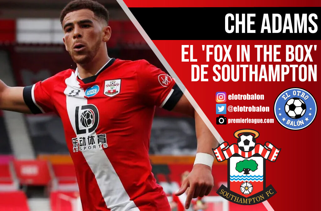 "Che Adams, el ""fox in the box"" de Southampton"